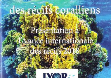 Couverture du document CMAS IYOR
