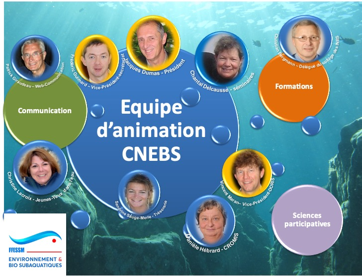 Equipe d'animation de la CNEBS Version mai 2020